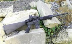 Rifle Bushman .450