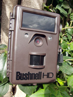 bushnell_trophy_cam_hd