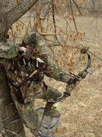 tree_stand