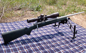 remington700police_inox_02