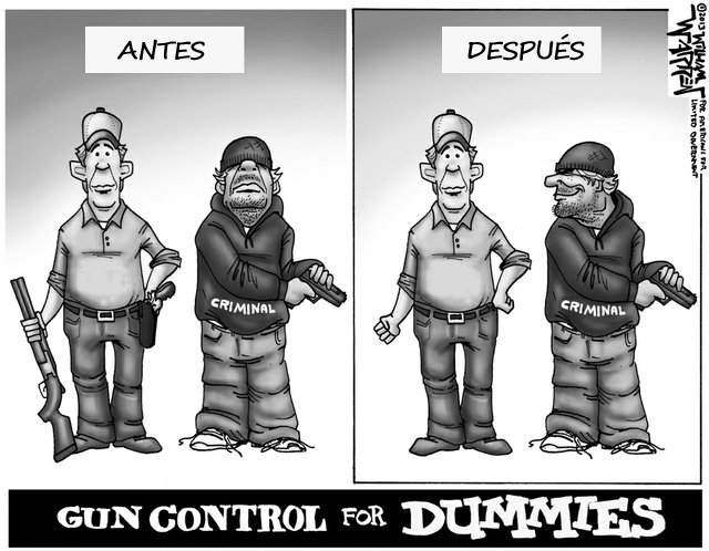 guncontrolcartoon
